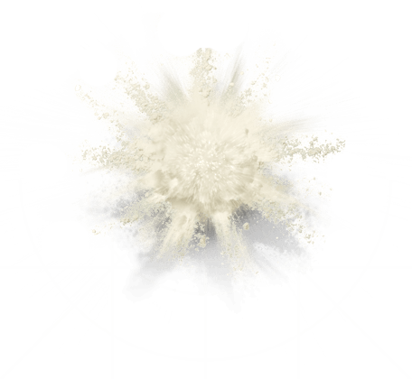 Dairy Powders Explosion