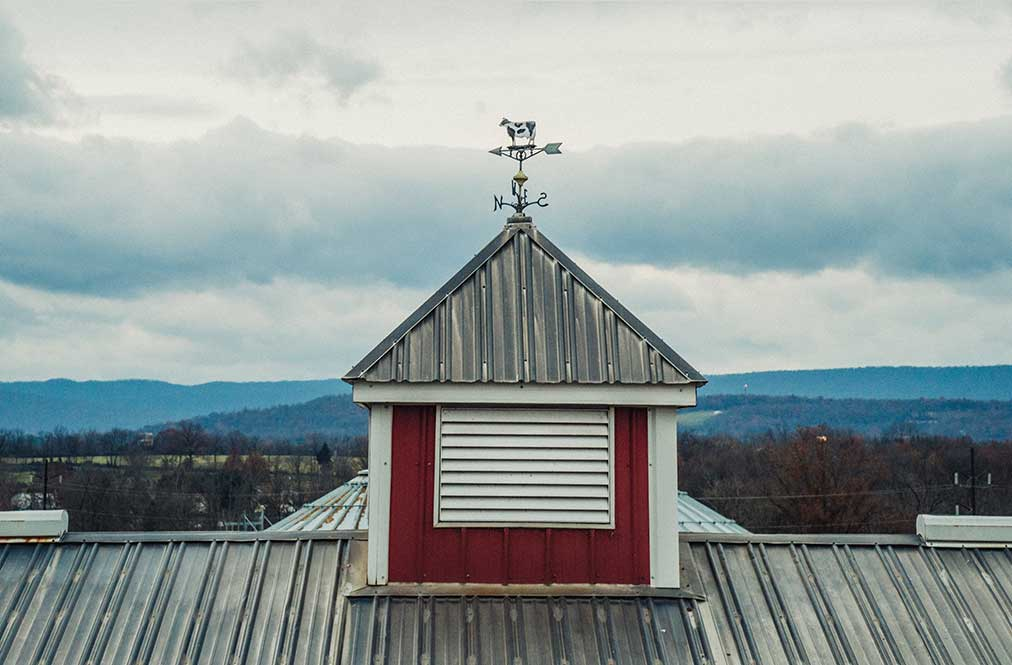 The Roof Of A Barn With A Windvane