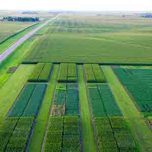 Aerial View Of A WinField United Answer Plot