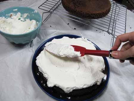 19r-whipped-cream-on-fudge