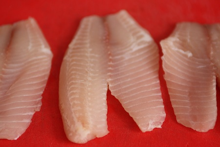 fish, fillets, tilapia