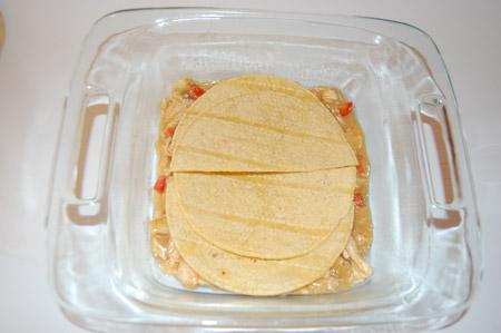 tortilla, chicken, enchilada