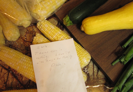 fresh, corn, corn on the cob