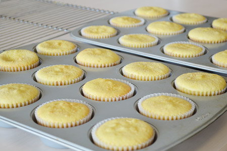 Cooled Cupcakes