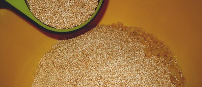 Add Quinoa
