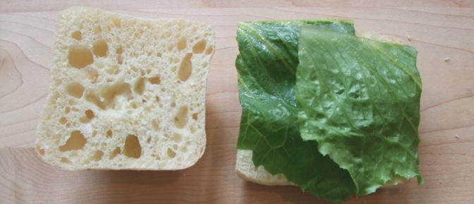 Lettuce on Bread