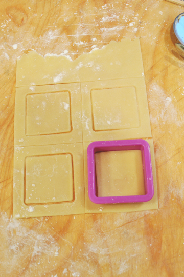 Cookie Cutter Squares