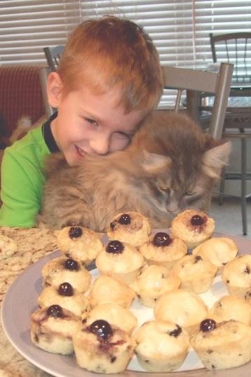 Boy Hugs Kitten