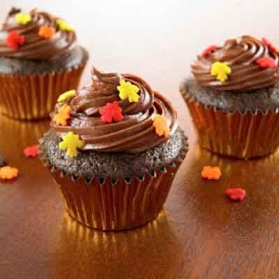 Chocolate Mini Cupcake Recipes