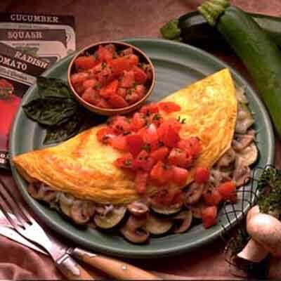 Garden Grill Omelet